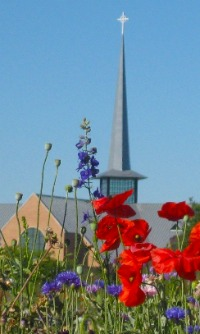 img_campus_wildflowers-sanctuary[1].jpg